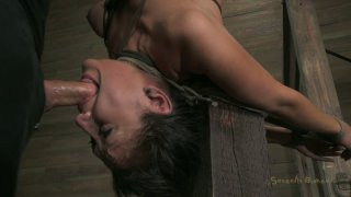 Salty brunette bitch Vicky Chase gives a head while hanging upside down